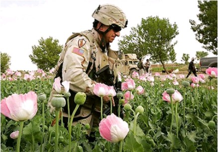 Troops Protect Government Drug Dealing